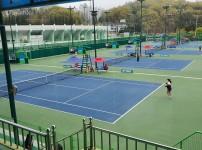 안동 오픈 테니스 대회